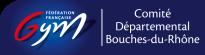 FFGym13 – Comité départemental des Bouches du Rhône – Fédération Française de Gymnastique